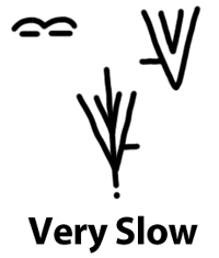 slow Step Five: Writing Non manual Signals Via Extramanual Marks